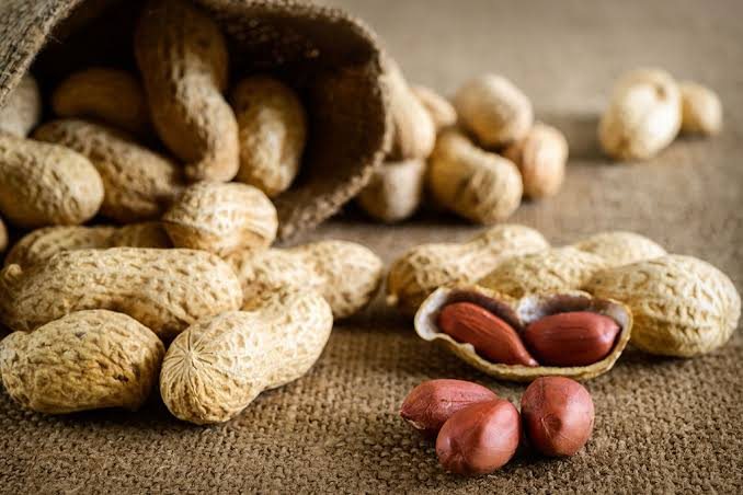 A Single Dose Of Antibody Treatment Can Stop Peanut Allergy For 6 Week